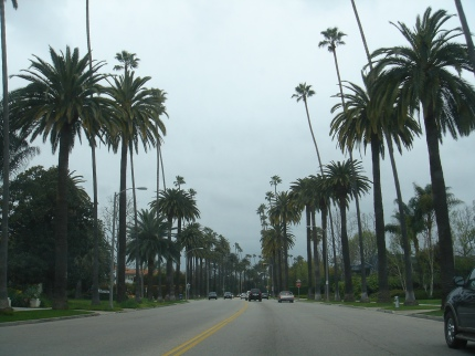 beverly hills avenue
