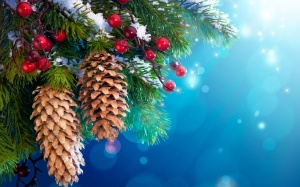 New-Year-Christmas-tree-decoration-snow-twigs-berries_2560x1600