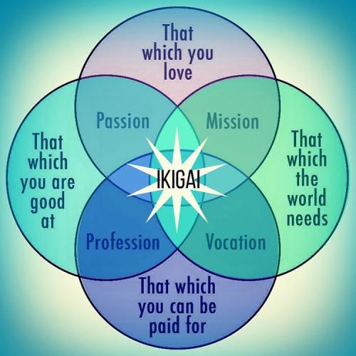 ikigai again