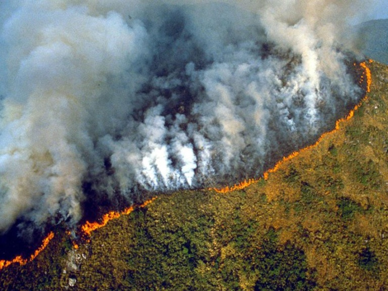 did-you-know-the-amazon-has-been-burning-for-3-weeks-we-could-lose-20-of-oxygen-in-the-world-world-of-buzz-5-768x576