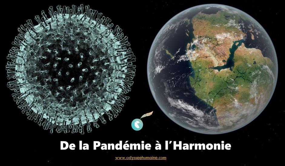 Pandémie Harmonie cover FInal